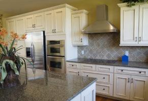 Kitchen Cabinetes Lutz FL